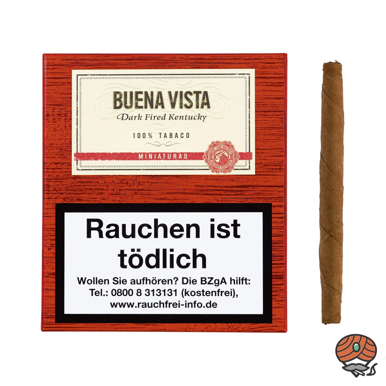 Buena Vista Dark Fired Kentucky Miniaturas Nr. 732 à 20 Stück