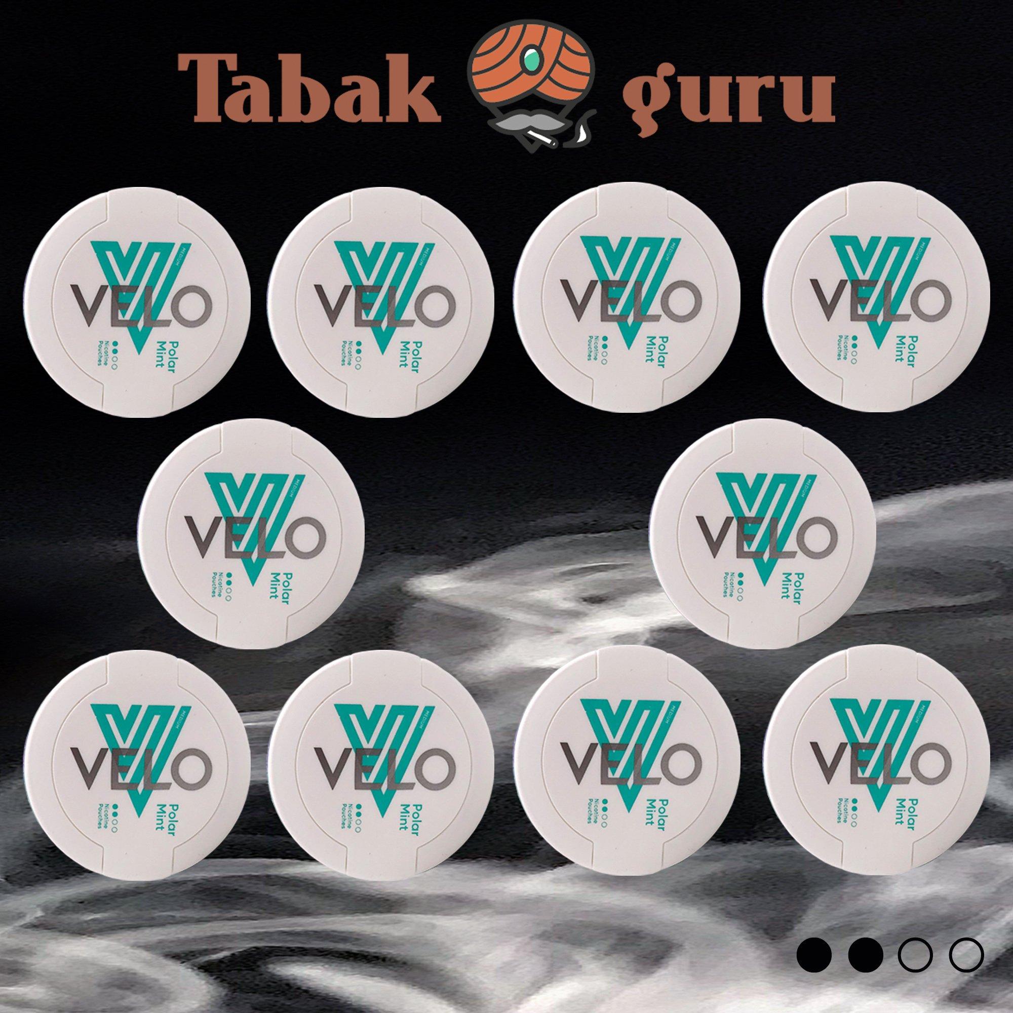 10x VELO Polar Mint Medium Kautabak Intensität 2